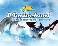 Marineland (animal suffering); A message to John Holer (owner) to provide better management and care