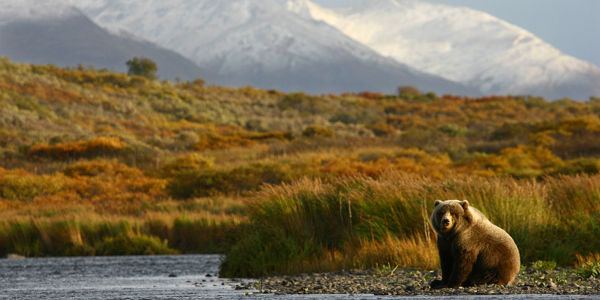 President Obama: Stop Pebble Mine