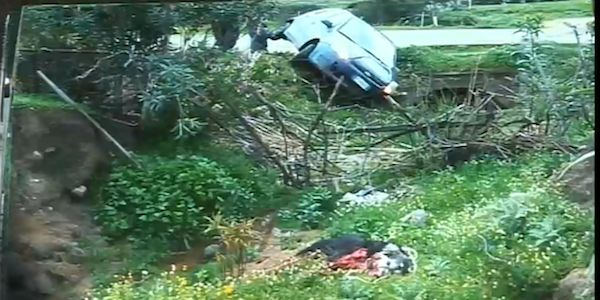 JUSTICE FOR THE DOG HOOKED TO A CAR AND KILLED IN IRGOLI, SARDEGNA - ITALIA