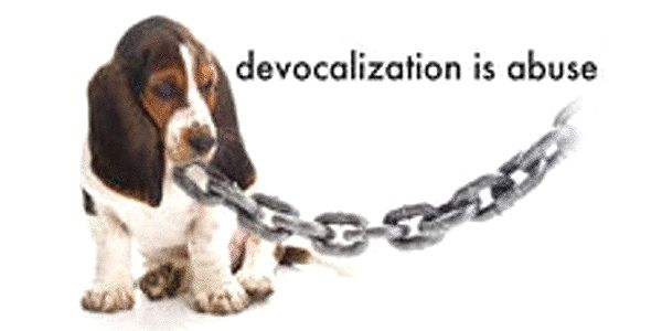 Ban Devocalization Nationwide