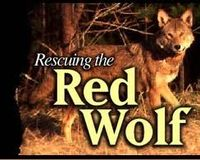 Save Red Wolves
