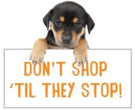 Tell the President to Crack Down on Puppy Mills