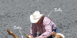 Cowboy Cruelty: End Animal Abuse at the Calgary Stampede