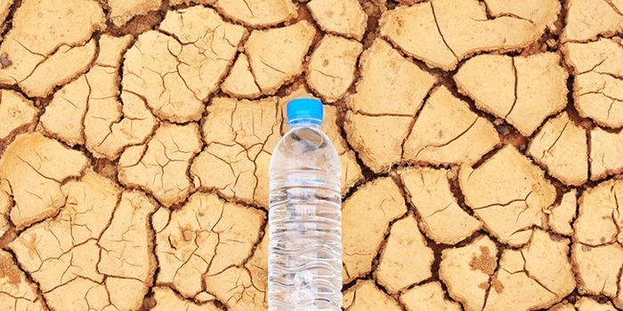 petition: Tell Wells Fargo to Stop Offering Nestle Water to their
