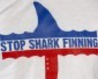 Campaign to fight against Shark Finning in Thailand