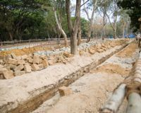 Save 1,800 trees in Lalbagh from Bangalore Metro