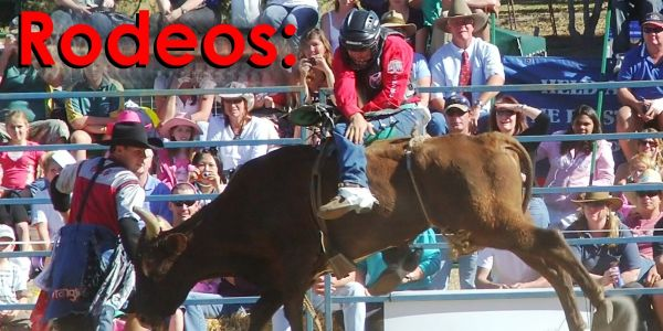 Ban Rodeos for Animal Cruelty