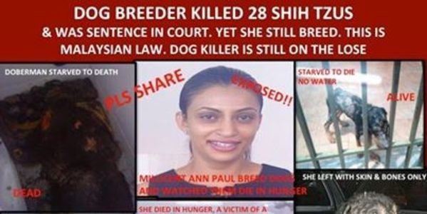STOP Animal Murderer Millicent Anne Paul
