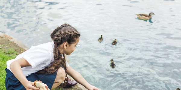 Girl standing on water looking at ducks
