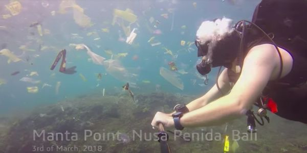 Bali plastic pollution, Care2
