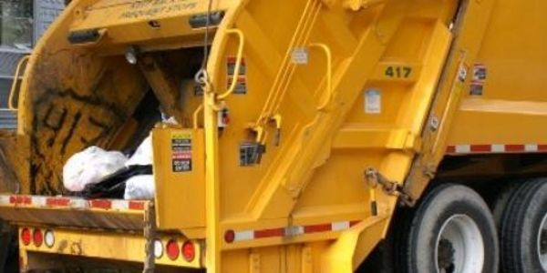 Demand justice for the appalling death of a dog crushed in a garbage truck