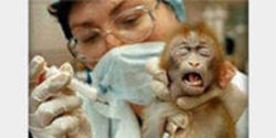 Investigate Biomedical Laboratories for Animal Welfare Act Violations