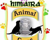 Animal Cops in Greece.. help us to press the government to create in Greece police for abuse of anim