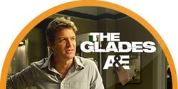 Save The Glades on A&E