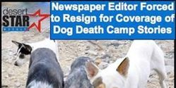 STOP COVERING UP DOG KILLING FIELDS IN SKY VALLEY FOR POLITICAL GAIN AND GET THE DOGS TO SAFETY