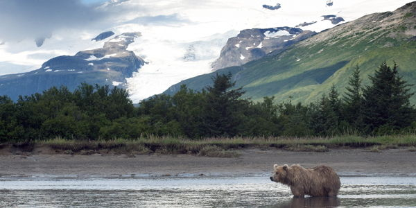 Tell EPA to prevent a mining catastrophe in Alaska