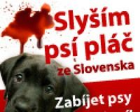 Stop Animal Cruelty in Slovakia