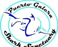 Support the Philippines first Shark Sanctuary in Puerto Galera