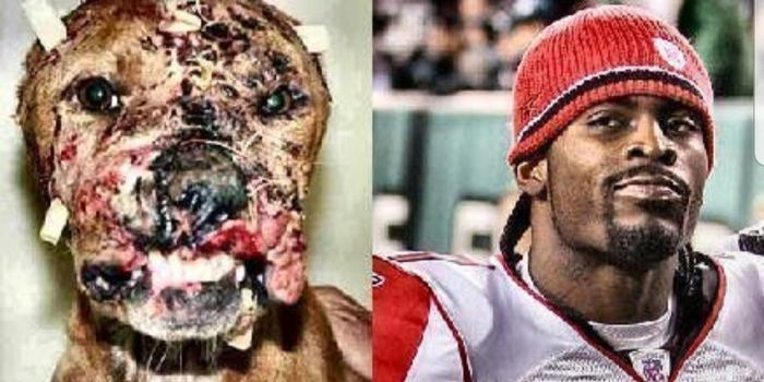 Sign Petition: Demand the NFL ban Michael Vick from being a captain of the 2020 ProBowl!!!