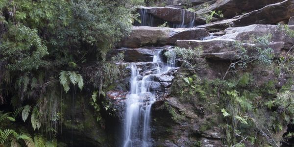 Save the Blue Mountains from Coal Seam Gas