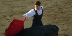 Stop Showing Bullfights on TV During Kids Viewing Time