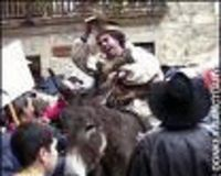 Donkey Abuse in the Streets of Spain on Shrove Tuesday/Mardi Gras