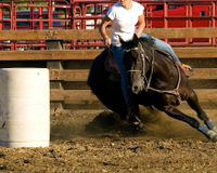 Stop Horse Tripping in Nevada