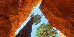 Tell Secretary Salazar to Protect Bryce Canyon National Park!