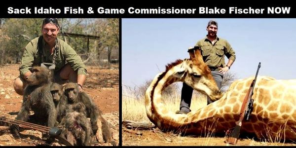 petition demand that idaho fish and game commission sack trophy