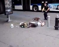 Get justice for the pit-bull Star shot to death while protecting passed out owner!!!