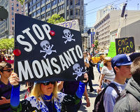 Tell Congress to Repeal the Monsanto Protection Act Permanently!