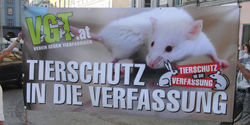 Austria: Animal welfare into the constitution!