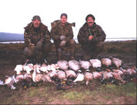 Stop Bird Hunting on Ecological Reserve