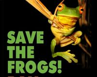 BAN Atrazine and other pesticides that are slowly killing the frogs population !