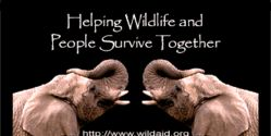 Helping Wildlife and People Survive Together