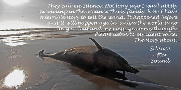 Peru, stop killing dolphins with seismic testing!