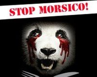 Club Morsico: Stop Eating Endangered Animals