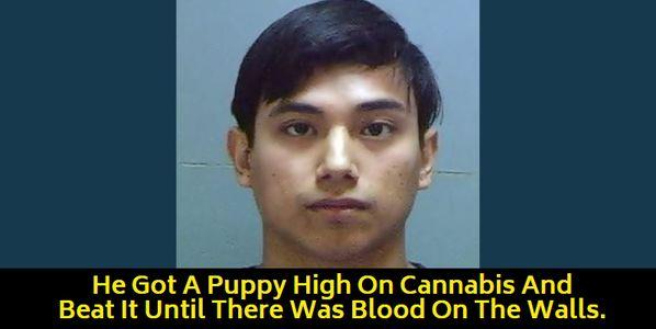 mugshot of animal abuser
