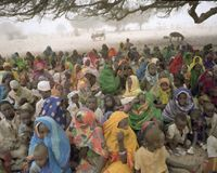 President Bush: End the Darfur Crisis NOW!
