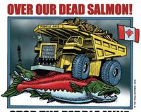 Update #2 Save Alaska's Wild Salmon, Stop the Pebble Mine