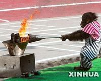 Stop the Wild Animal Olympics being held in Shanghai, Ending the Abuse!