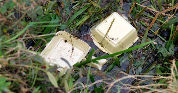 Styrofoam on grass