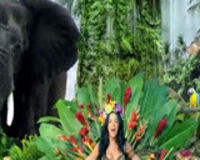 Ask Katy Perry to stop using captive animals in her music videos #katyperry #roar