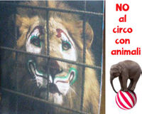 No al circo con gli animali - BOLLINO NERO ai comuni che li ospitano