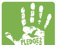 Pledge To Fledge