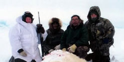 Ban Polar Bear Trophy Hunts