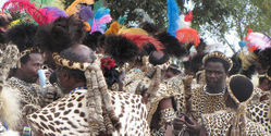 Stop Killing Leopards for Religious Ceremony