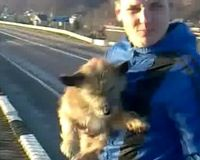 A man brutually executes a poor dog and throws it down the bridge.