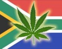 legislation of marijuana in South africa