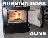 Stop Burning Dogs Alive at Ohio Shelter